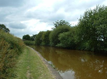Trent & Mersey Canal at Hassall Green